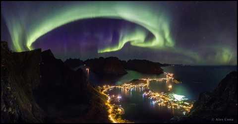 alex-conu-norvegia.jpg